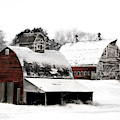 South Dakota Farm by Julie Hamilton