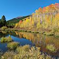 South Elbert Autumn Beauty by Cascade Colors