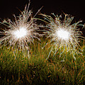Sparklers In The Grass by Scott Lyons