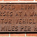 Speed Limit Sign For Horses And Motor Vehicles by Rose Santuci-Sofranko