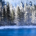 Splendor Of  Winter Silence by Karen Wiles