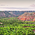 Sprawling Panorama Of Palo Duro Canyon And Capitol Peak - Texas State Park Amarillo Panhandle by Silvio Ligutti