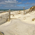 Spring At The Beach On Cape Cod by Michelle Constantine