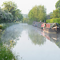 Spring Morning On The Oxford Canal  by Tim Gainey