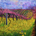 Spring Vineyard by Anne Cameron Cutri