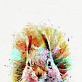 Squirrel Painting by Nikolay Radkov