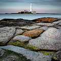 St Mary's Lighthouse by Dave Bowman