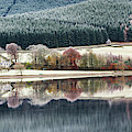 St Marys Loch Seaonal Reflections by Tim Gainey
