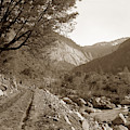 Stage Road Near El Portal, Yosemite Valley Circa 1910 by California Views Archives Mr Pat Hathaway Archives