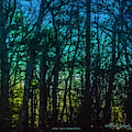Stained Glass Dawn by Bill McEntee