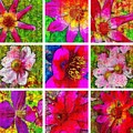 Stained Glass Pink Flower Collage  by Mo Barton
