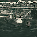 Stand Up Paddleboard Spokane River by Matthew Nelson