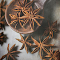 Star Anise 4816 By Tl Wilson Photography  by Teresa Wilson