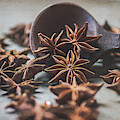 Star Anise 4825 By Tl Wilson Photography  by Teresa Wilson