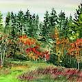 State Of Washington Fall  by Irina Sztukowski