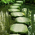 Stepping Stones In A Japanese  Garden by Brytta