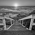 Steps To The Sun  Black And White by Peter Tellone