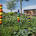 Sticks With Colorful Balls In A Garden by Stefan Rotter