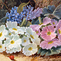 Still Life Of Flowers by Oliver Clare 1853 - 1927