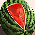 Still Life Watermelon 1 by Juan Carlos Rios