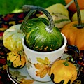 Still Live With Autumn Coffee Cup And Gourds by Marsha McDonald