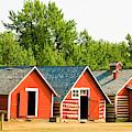 Storage Sheds At Bar U Ranch  by Ola Allen