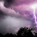 Storm Chaser by Trish Tritz