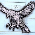 Street Art In Tunisia  Eagle by Angelika GAIGL