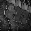 Strings Series 49 by David Morefield