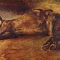 Study For Dead Horse by Gericault Theodore