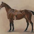 Study Of A Saddled Bay Hunter, 1828  by John E Ferneley