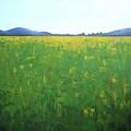 Summer Wild Field by Vesna Antic