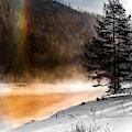 Sun Dog Of Yellowstone by Karen Wiles