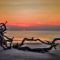 Sun Up Driftwood Beach Sunrise Jekyll Island Georgia Art by Reid Callaway