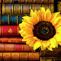 Sunflower In Stack Of Books by Garry Gay