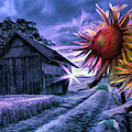 Sunflower Watch In Night Shades by Debra and Dave Vanderlaan