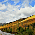 Sunlight On Fall Colors Along Million Dollar Highway by Ray Mathis