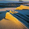 Sunlight On Sand by Robert Potts