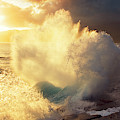 Sunlit Wave - Hawaii by Charmian Vistaunet