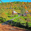 Sunny Day On Sleepy Hollow Farm Woodstock Vermont Fall Foliage by Toby McGuire