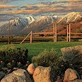 Sunrise In Carson Valley by James Eddy