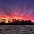 Sunrise Over A Frosted Pasture by Dale Kauzlaric