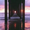 Sunrise Over The Pacific Ocean Seen by Panoramic Images