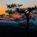 Sunset At Ravens Roost by Greg Reed