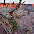 Sunset In Canyonlands From Green River Overlook by Ray Mathis