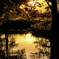 Sunset In The Spreewald by Sun Travels