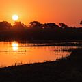 Sunset On The Chobe River by Claudio Maioli