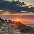 Sunset On The Cliffs Of Manuel Antonio by Darylann Leonard Photography