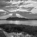 Sunset Over Snake Island In Winthrop Ma From Coughlin Park Green Grass Black And White by Toby McGuire
