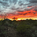 Sunset Over The Tucson Mountains by Chance Kafka
